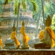 Row of Buddha statues with yellow and orange cape — Stock Photo #35315195
