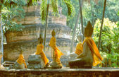 Row of Buddha statues with yellow and orange cape — 图库照片