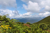 Scenic landscape at the Ring of Kerry — 图库照片