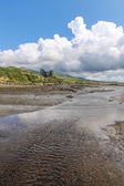 Ballycarbery Castle with tidal creek — Stok fotoğraf
