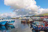 Colorful boats in the port of Portmagee — Stock Photo