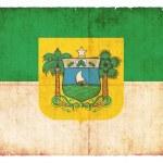 Grunge flag of Rio Grande do Norte (Brazil) — Stock Photo #50542745