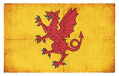 Grunge flag of Somerset (Great Britain) — Stock Photo