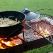 Braai with meat and a cast iron pot - Stock Photo