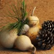 Calabash and pine cones — Stock Photo