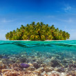 Coral reef and the Island — Stock Photo #13598428