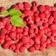 Ripe raspberries on sack fabric - Stock Photo
