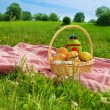 Holiday picnic in park - Stock Photo