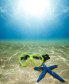 Scuba mask and starfish — Stock Photo