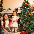 Girl with her little sister decorating Christmas tree - Stock Photo