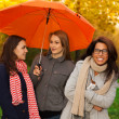 Stock Photo: Friends not afraid of nasty weather