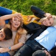 Group of four young laying in the grass — Stock Photo #22245733
