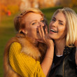Laughing girls in sunny park — Stock Photo #22245747