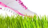 тапки, наступая на траве — Стоковое фото