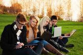 Quatro estudantes trabalhando em laptops no parque — Foto Stock