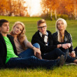 Four students sitting on the loan — Stock Photo