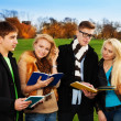 Two students couples in park — Stock Photo