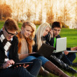Four students working on laptops in the park — Stock Photo #24688829