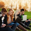 Four students working on laptops in the park — Stock Photo