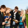 Four students discussing subject in the park — Stock Photo