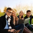 Stock Photo: Company of young adults