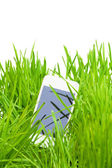 Smart phone in grass — Stock Photo