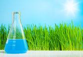 Spring chemistry — Stock Photo