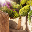 Mediterranean street with flowers and trees — Stock Photo