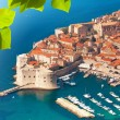 Dubrovnik old town port — Stock Photo
