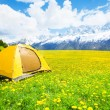 Nice place for tent camping — Stock Photo