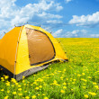 Camping tent — Stock Photo #28469623