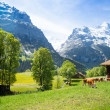 Switzerland landscape — Stock Photo