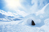 Igloo and high snowdrift — Stock Photo