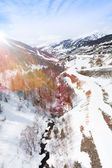 Creek in the mountain at winter — Stock Photo