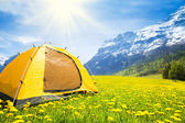 Camping tent in — Stock Photo