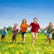 Kids running in the field — Stock Photo #28480817