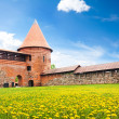 Stock Photo: Kaunas castle yard