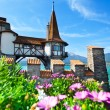Oberhofen tower and flowers — Stock Photo