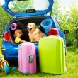 Kid, dog and luggage waiting for depature — Stock Photo #32012785
