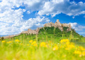 Spis castle at spring — Stock Photo