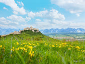 Spis castle with mountains on background — Stock Photo