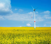 Wind power electricity turbine — Stock Photo