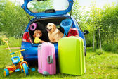 Kid, dog and luggage waiting for depature — Stock Photo