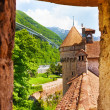 Loophole of chateau de Chillon — Stock Photo #36199567
