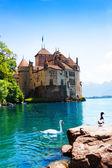 Chateau de chillon i łabędzie — Zdjęcie stockowe