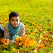 Boy with autumn leaves — Stock Photo