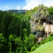 Slovenian famous Predjama castle — Stock Photo #36201267