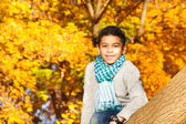 Boy sits on the tree — Stock Photo