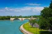 Ruins of bridge in Avignon — Stock Photo