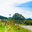 Road to Hochosterwitz castle — Foto Stock #42493813